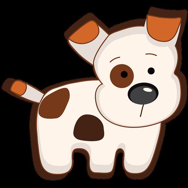 Little dog for Orchard Dog Grooming Prestbury Woodmancote Southam